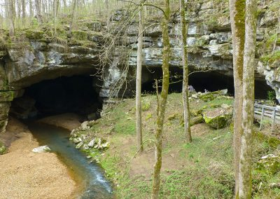 Terrestrial Laser Scanning Survey of Russell Cave National Monument, Alabama