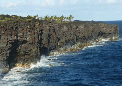 Petroglyph Documentation Research in National Parks: Case Studies from Hawaii