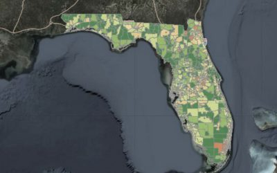 USF develops comprehensive coronavirus map detailing ZIP codes, nursing homes and on-campus cases
